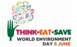 Think-Eat-Save UNEP2013