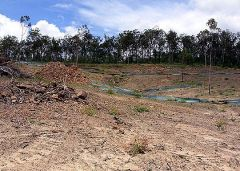 flagstone_landclearing